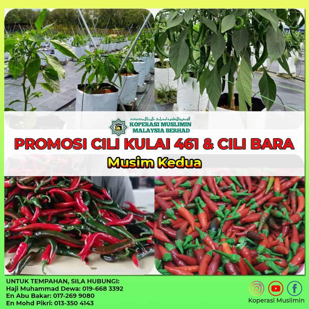 Promosi Agrotani